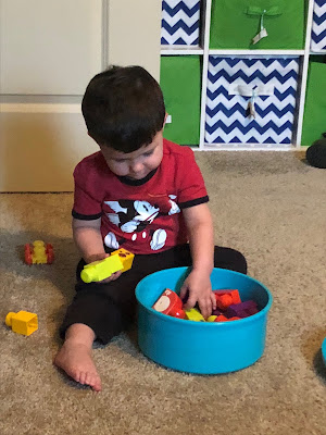 2 Year Toddler Update