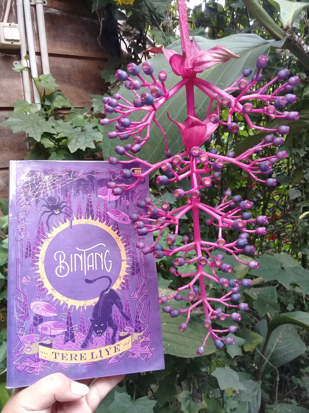 Review Novel Bintang Tere Liye Cover