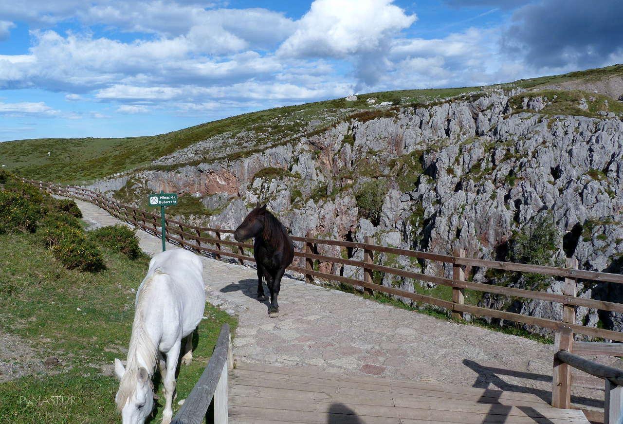 Mina de La Buferrera - Parque Nacional de Los Picos de Europa - Asturias