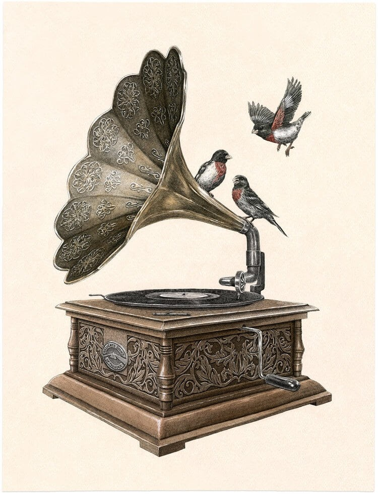 05-Gramophone-Steeven-Salvat-Ink-Drawings-Birds-on-Vintage-Objects-and-Machines-www-designstack-co