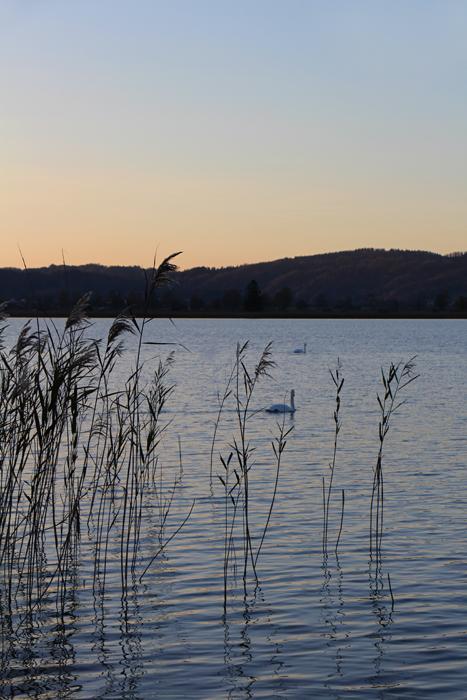 Sonnenuntergang am Kochelsee (Ostufer)