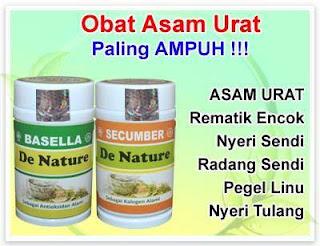 obat asam urat resep dokter herbal herbal de nature