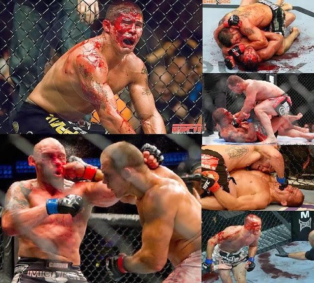 Resultado de imagem para O MMA DA UFC