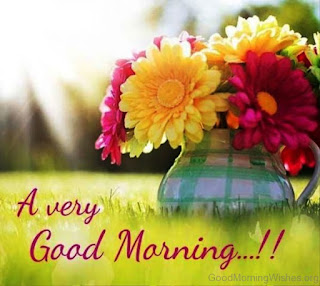 good morning,good morning song,good morning video,good morning wishes,good morning beautiful,romantic good morning status,good morning whatsapp status,good morning image,good morning status,new good morning status,good morning song for kids,morning,good morning pakistan show,good morning video whatsapp,good morning romantic status,good,good morning song for children,good morning song for kindergarten