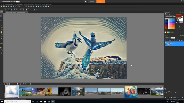 Corel PaintShop Pro 2019 Ultimate v21.1.0.8