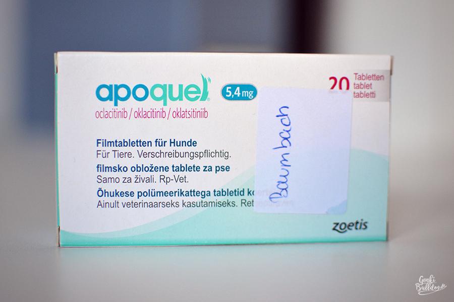 Apoquel Medikament gegen Juckreiz beim Hund