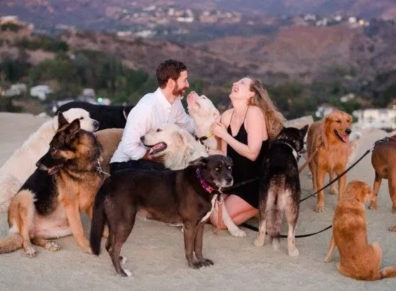 Man Proposes to Girlfriend with 16 Dogs in Attendance