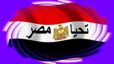 ائتلاف  تحيا مصر الشعبي , مبادرة معلمى مصر,شركة معلمي مصر الوطنية للخدمات ودعم وتمويل المشروعات التعليمية