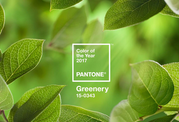 PANTON GREEN colour of the 2017