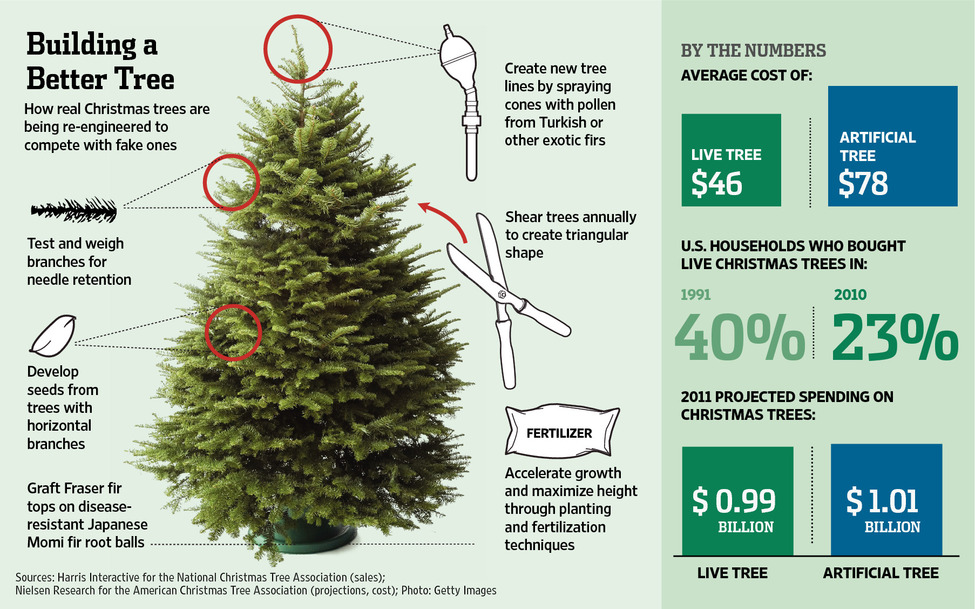 Your Christmas Tree Might Cost You A Little Bit More This Year