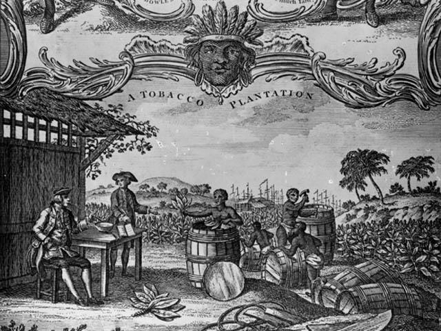 Colonial plantation