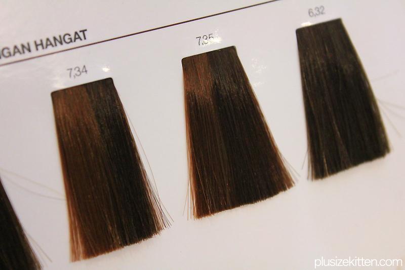 Plus Size Kitten: L'Oréal Professionnel INOA 2 Hair