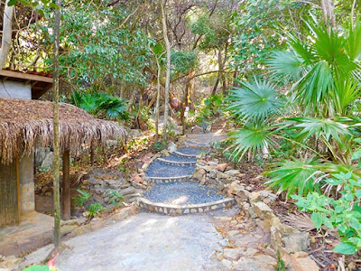what's new, improvements, paya bay resort, #payabay, #payabayresort, sky trail, nature trails,