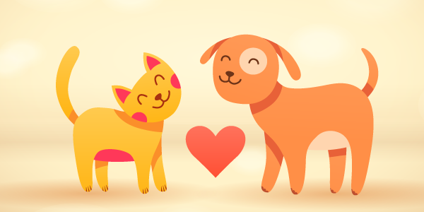 10 Basic Ways to Care for Your Pet
