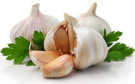 bawang putih untuk asma
