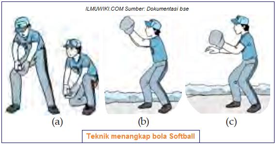 Teknik menangkap bola softball