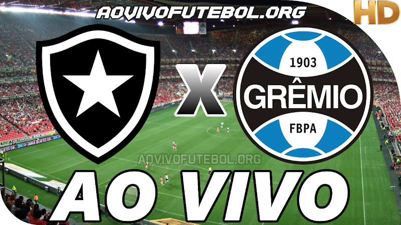 Botafogo x Grêmio Ao Vivo na TV HD