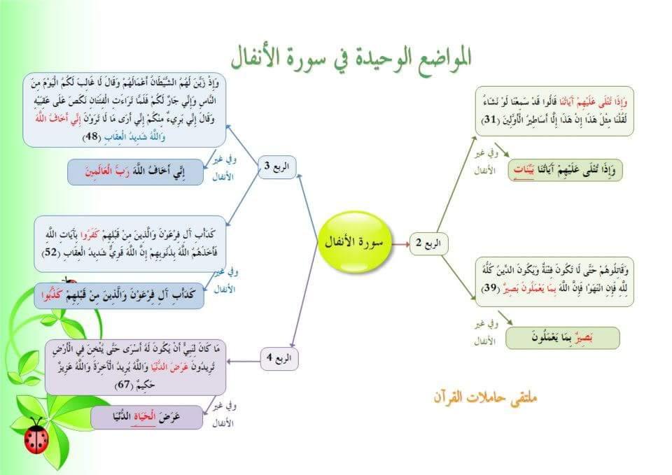 متشابهات سور القرآن الكريم دورة الشيخة أسماء لطفي الخامسة منفردات سورة الأنفال