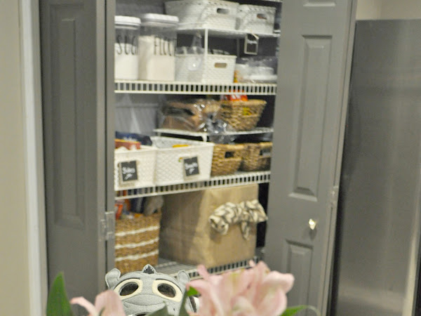 10 Days of Organizing: A Family Friendly Pantry Makeover