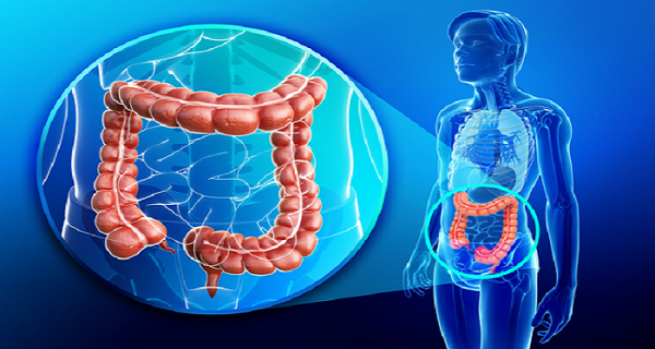 Cleanse 30 Pounds Of Toxins From your colon