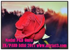 Modul SIM PKB TK 2017