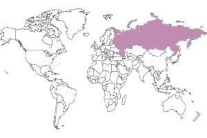 Rusia, el país más grande del mundo