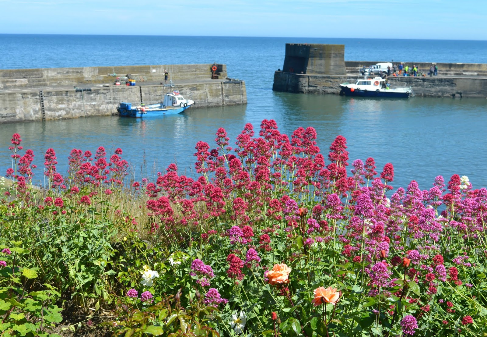 Northumberland Coastal Route - Craster