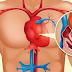 Tu cuerpo avisa 1 mes antes de un infarto – pistas ocultas que todos deberíamos conocer