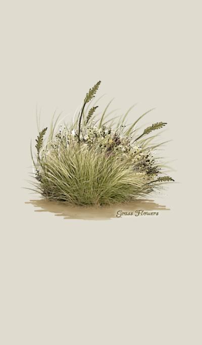 Grass Flowers *