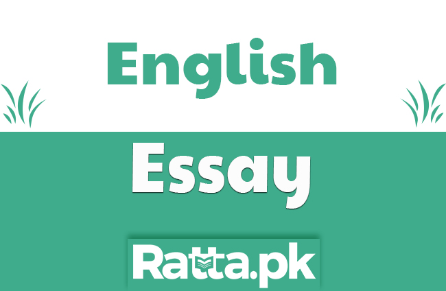 Life in Big City English Essay for 10th and 12th Class