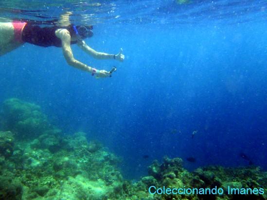 Peces y Snorkel en Maldivas