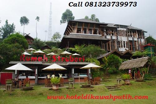 Harga hotel di dekat kawah putih ciwidey