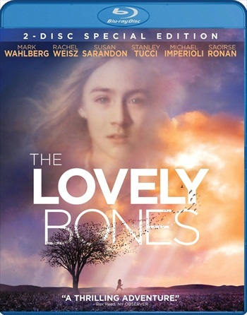 The Lovely Bones 2009 Dual Audio Hindi 480p BluRay 400MB