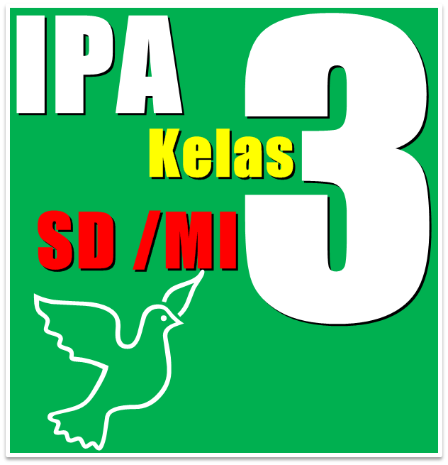 ipa 3
