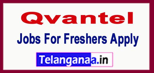 Qvantel Recruitment 2018 Jobs For Freshers Apply
