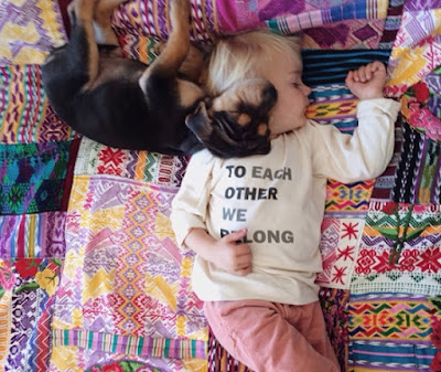 Imagen tierna perro y bebe durmiendo siesta
