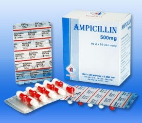 Harga Obat Ampicillin 500 dan 250 mg terbaru 2017