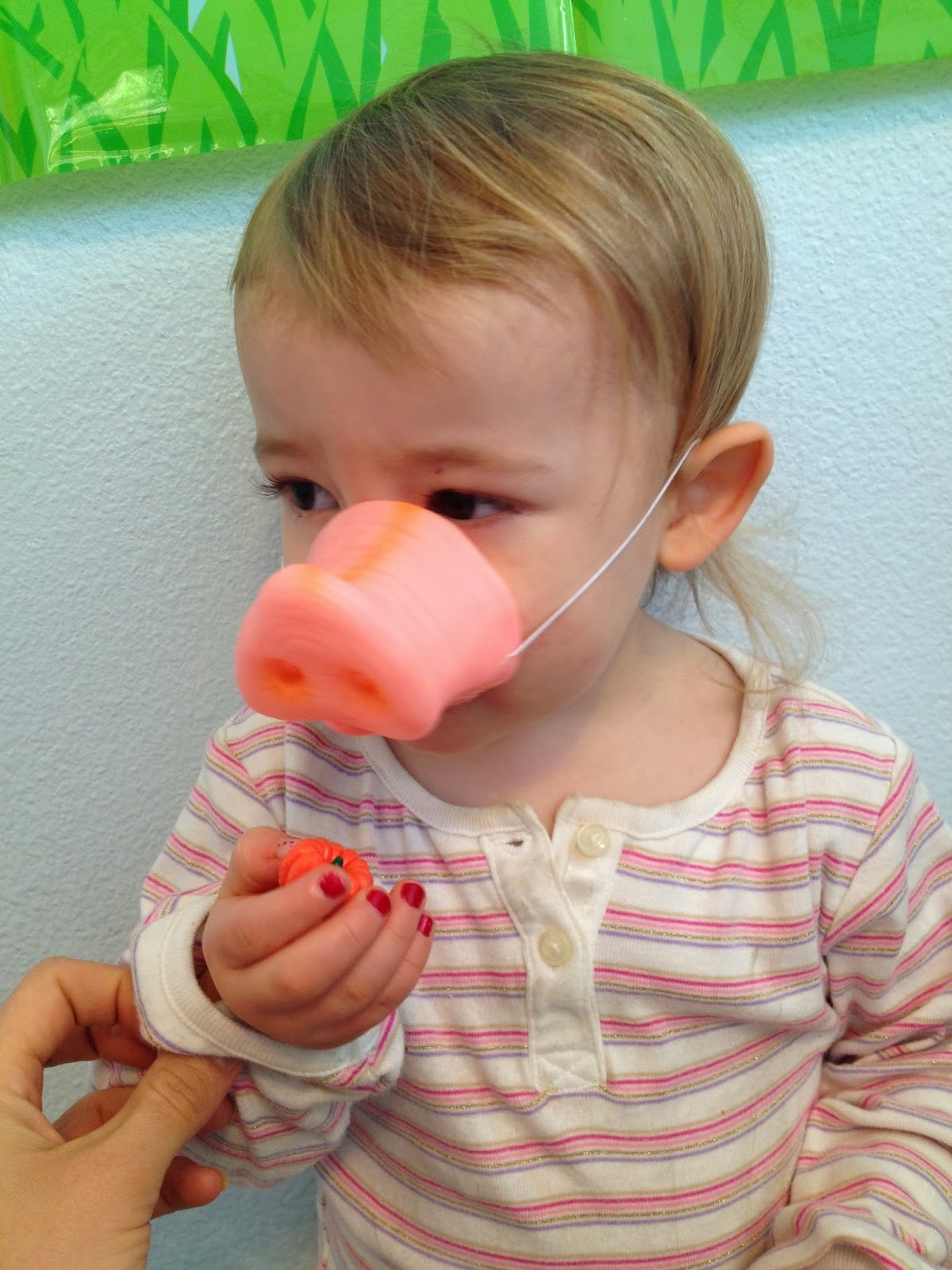 5 Senses Learning Pig Face And Puppets