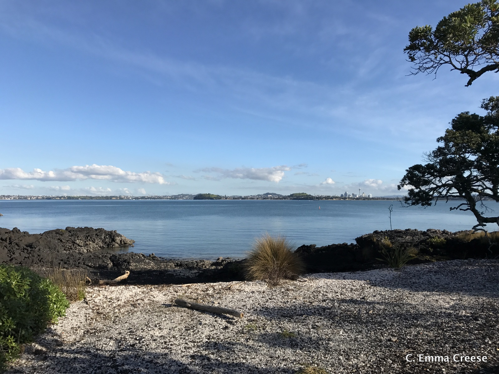 Auckland Day Trip Rangitoto Island New Zealand Adventures of a London Kiwi