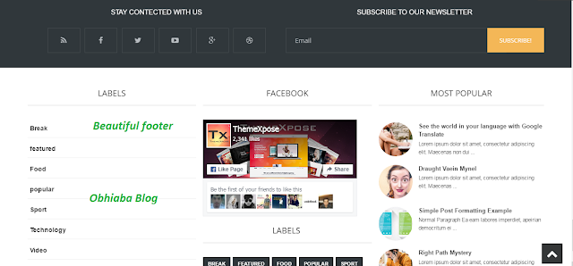 Blogus blogger template footer
