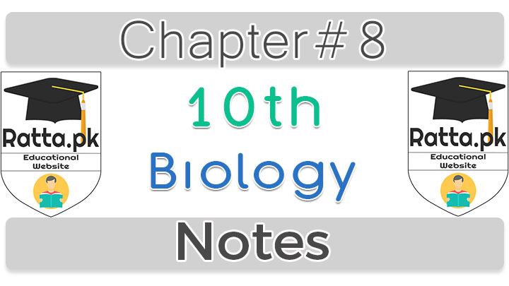 10th Biology Chapter 8 Biotechnology Notes