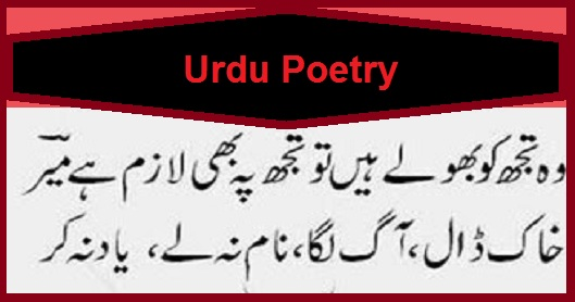 Urdu Poetry, Poetry, Meer Taqi Meer,  Gazal, Shayari, Hindi Shayari, Love Shayari, Urdu Shayari, Love Poetry, Sad Urdu Poetry, Best Urdu Poetry, Love Urdu Poetry