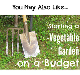 http://proverbsthirtyonewoman.blogspot.com/2016/05/starting-vegetable-garden-on-budget.html#.WIfEhvLkrcQ