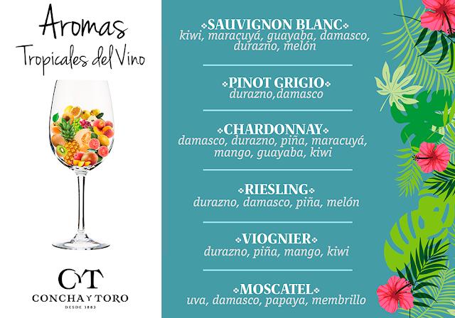 Descubriendo notas tropicales en los vinos