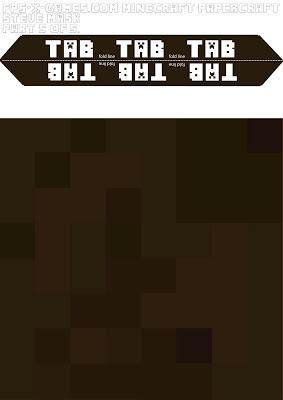 picture regarding Minecraft Steve Head Printable identify Fb