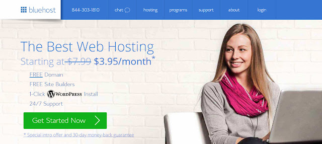 Bluehost Review best web hosting service provider for WordPress blogs and small business websites