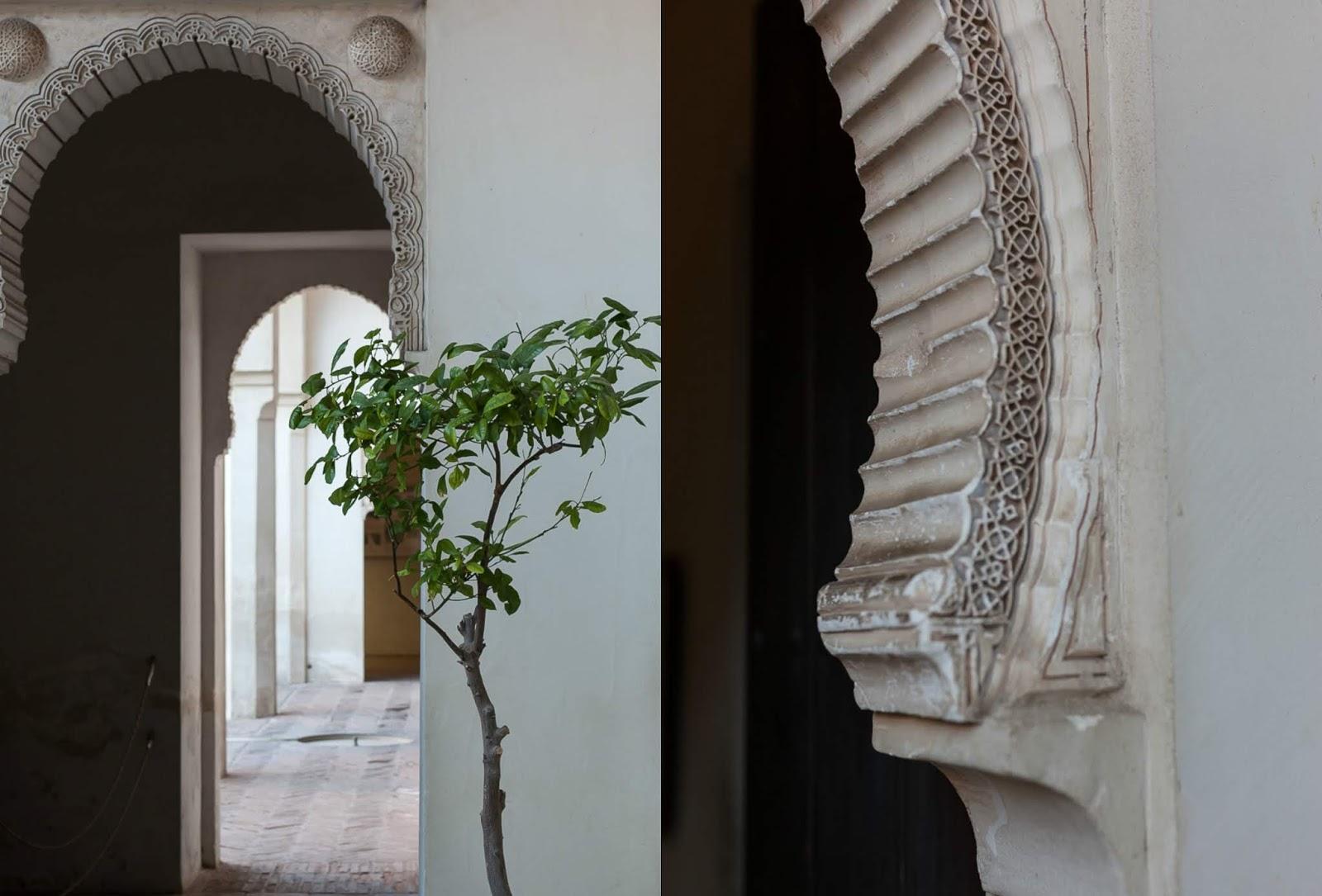 Malaga photo tour in the morning light