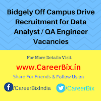 Bidgely Off Campus Drive Recruitment for Data Analyst / QA Engineer Vacancies