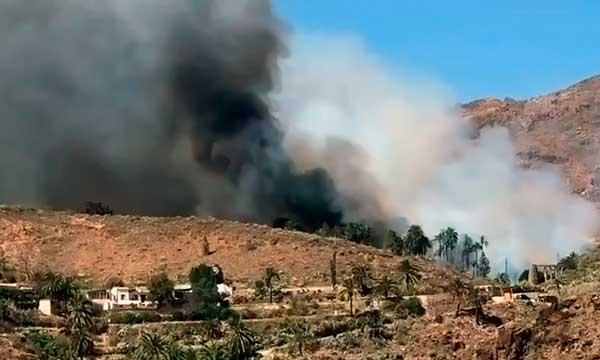 Incendio en zona de Fataga, Bomberos advierten de peligrosidad