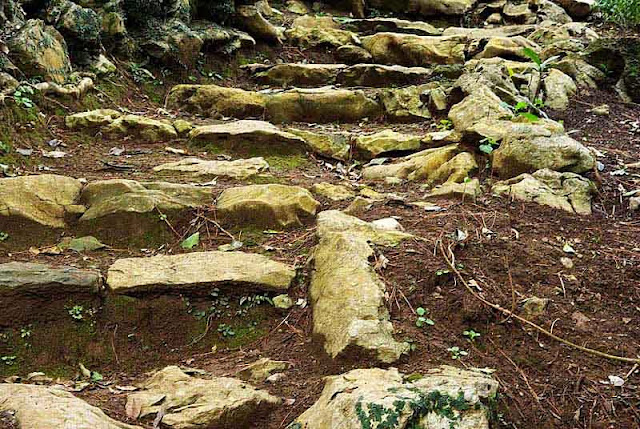 stone stairs along mountain trail